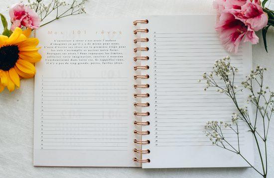 MyblueprintVF - Planner Non Daté Rewrite Your Story Agenda Rêves Développement Personnel Slow Living Semaine Hebdomadaire - 101 Reves